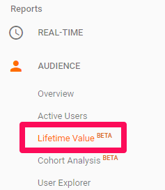 customer lifetime value option that brands can check when using Google analytics.