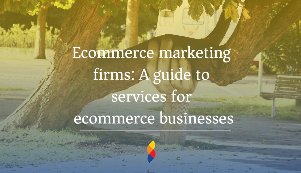 Ecommerce marketing firms: A guide to services for ecommerce businesses